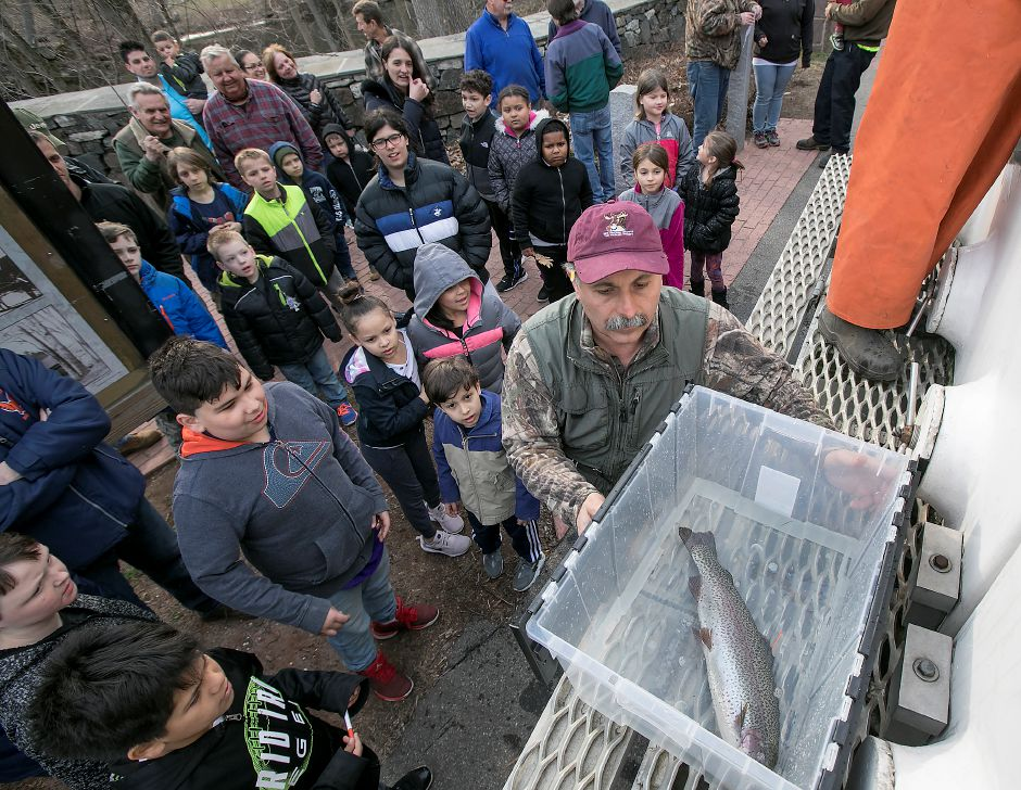 Peter Picone of the Quinnipiac River Watershed Association prepares to hand off a rainbow trout to children during the annual fish stocking at Red Bridge in Meriden, Thursday, April 12, 2018. Dave Zajac, Record-Journal