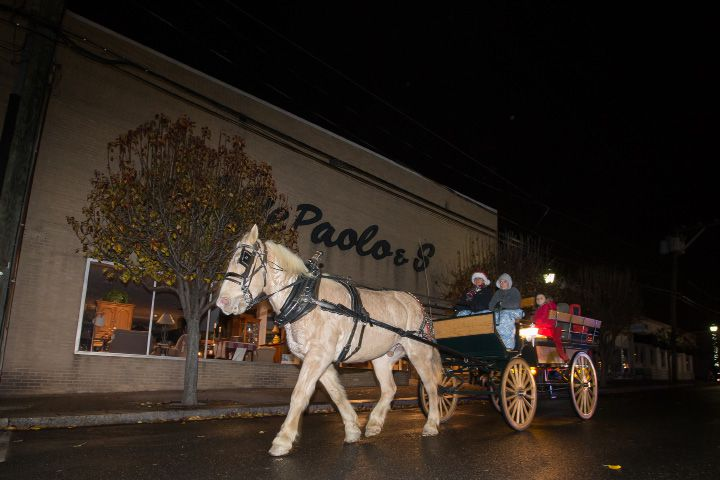 "Joyce Wood and Tyler Vincent, 12, of Wood Acres Farm drive a carriage on Center Street pulled by ""Tanner"" Friday during White Christmas in the Community in Southington Dec. 2, 2016 