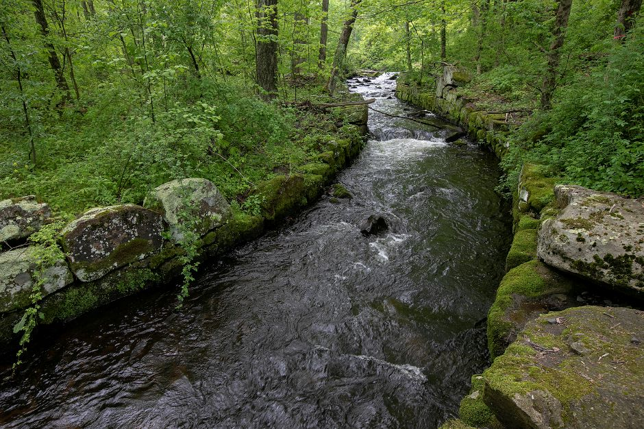 The Muddy River flows through the Tyler Mill Preserve, Fri., May 17, 2019. Visitors will see dramatic differences next week to the landscape of Tyler Mill Preserve, which is slated to reopen after being closed for a year. Dave Zajac, Record-Journal