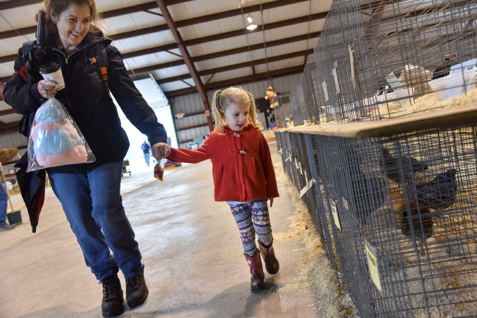 Rose Mandel, 3, admires chickens with her grandmother Jam Mandel on display at the Durham Fair on Friday, Sept. 28, 2018. | Bailey Wright, Record-Journal