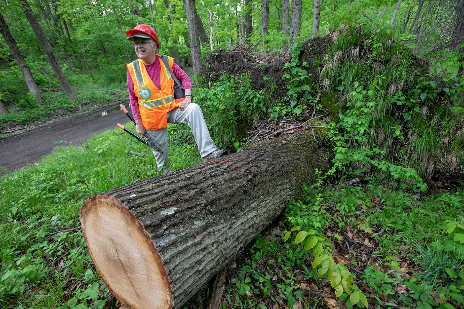 Conservation Commission member Dianne Lendler stands Friday next to a large red oak tree that crews cleared away from the road  in the Tyler Mill Preserve in Wallingford. For more photos, visit www.myrecordjournal.com. Photos by Dave Zajac, Record-Journal