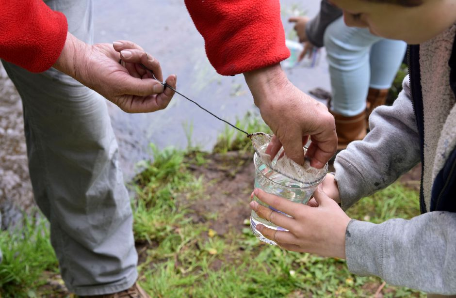 Trout Unlimited volunteers help Memorial Middle School students in the Trout in the Classroom program release their fish at Wadsworth State Park on May 10, 2019. | Bailey Wright, Record-Journal