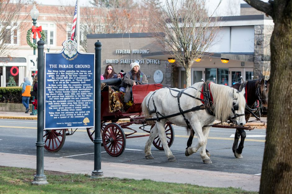 Davinia Saglio of Allegra Farms drive a horse pulled wagon for rides Saturday during the Seasons of Celebration at the Town Hall in Wallingford December 1, 2018 | Justin Weekes / Special to the Record-Journal