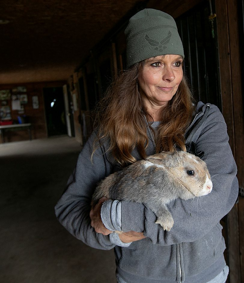 "Rabbit ""Jessica"" is held by Dawn Cestaro, owner of Cheshire Hollow Farm on Peck Lane in Cheshire, Mon. Nov. 26, 2018. The 100-acre farm hosts a petting zoo and sells a variety of Christmas trees. Dave Zajac, Record-Journal"
