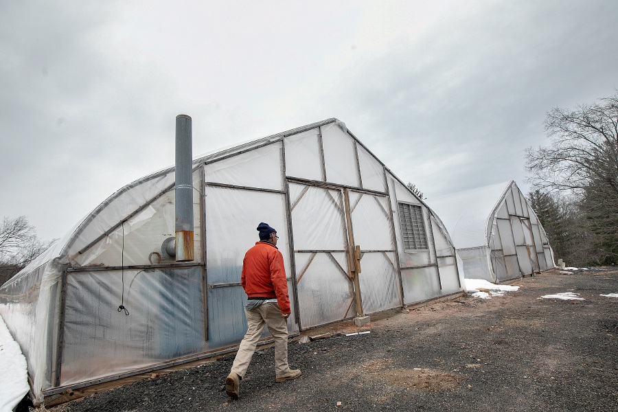 A worker returns to a greenhouse Wednesday at Summit Hill Growers, a new farm on Waterbury Road across from Darcey School in Cheshire. The farm is looking to build a stand on Waterbury Road to sell produce and flowers grown in nearby greenhouses. Photos by Dave Zajac, Record-Journal