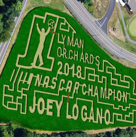 A tribute to 2018 NASCAR Champion Joey Logano was the inspiration for the 20th annual corn maze at Lyman Orchards. According to Executive Vice President John Lyman III, it takes months of brainstorming and planning to come up with the idea for the maze, but only hours for it to be created once the corn is planted. Photo courtesy of Lyman Orchards.