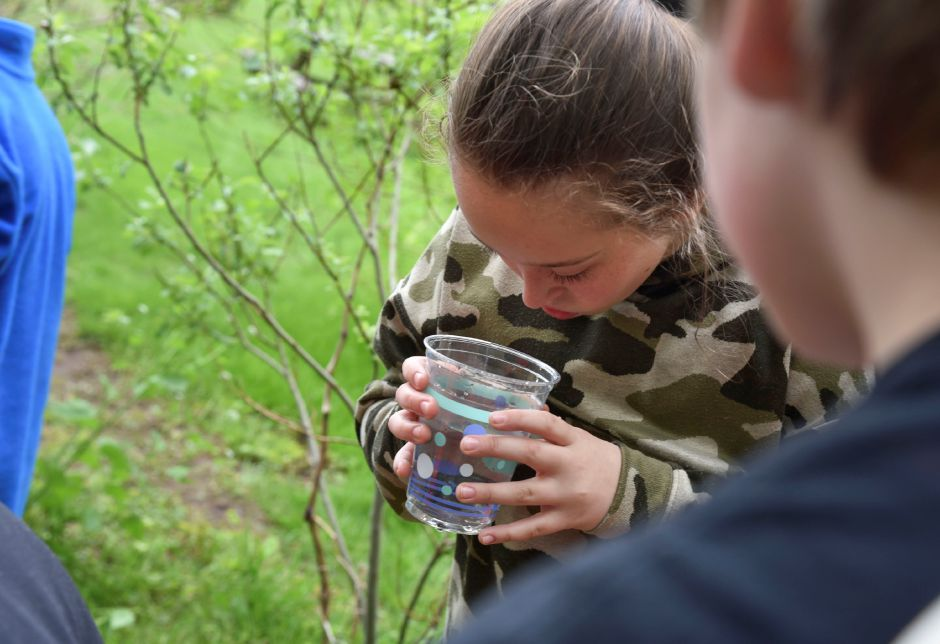 Memorial Middle School students in the Trout in the Classroom program released their fish at Wadsworth State Park on May 10. | Bailey Wright, Town Times