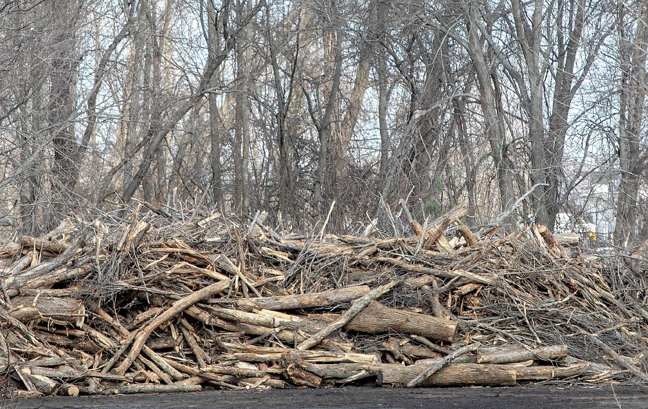 A large pile of logs and storm debris at the end of Garden Road near the Quinnipiac River, Mon., Mar. 18, 2019. Dave Zajac, Record-Journal