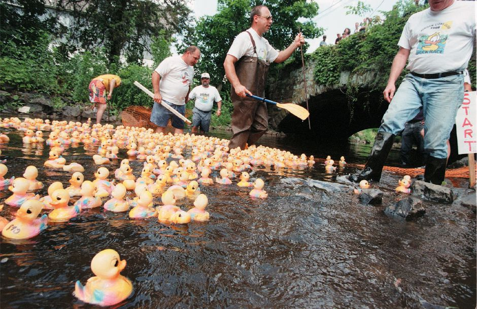 RJ file photo - Wearing wadders Ed Haberli, center, helps stray rubber ducks into the water at the beginning of the Lions Club duck race in City Park in Meriden Sunday afternoon June 13, 1999.