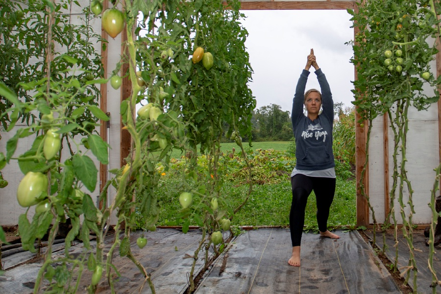 Kelsey Sperl, owner/instructor at Rise Yoga, takes a pose in a greenhouse at Muddy Roots Farm Sept. 10, 2018. She will teach yoga sessions on the farm later this month. | Richie Rathsack, Record-Journal