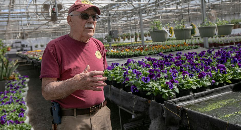 Sebby Milano, head grower at Winterberry Gardens, talks on Wednesday about the upcoming opening of the business at 2070 West St., Southington. Winterberry Gardens opens Monday April 1.