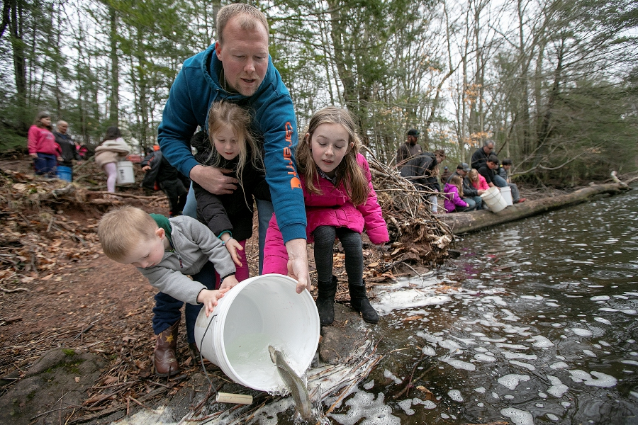 B.J. Vernon, of Meriden, and children, left to right, Lucas, 3, Madison, 5, and Samantha, 8, release a brown trout into the Quinnipiac River during the annual fish stocking along the Quinnipiac River Gorge Trail in Meriden, Mon., Apr. 8, 2019. Dave Zajac, Record-Journal