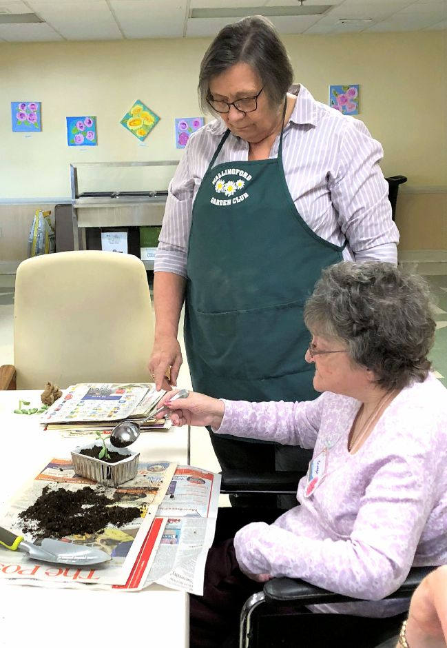Ginger Patrie, front, and Kathy Bryson of the Wallingford Garden Club talk about gardening.
