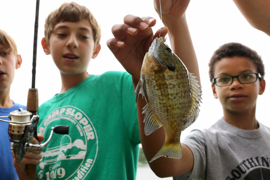 Camper Alex Quirk 9, right checks out the sunfish caught by Jacob Beuger 15 left at Slopers Pond at the Southington-Cheshire YMCA Camp Sloper in Southington on Tuesday August 13, 2019. Aaron Flaum, Record-Journal Staff