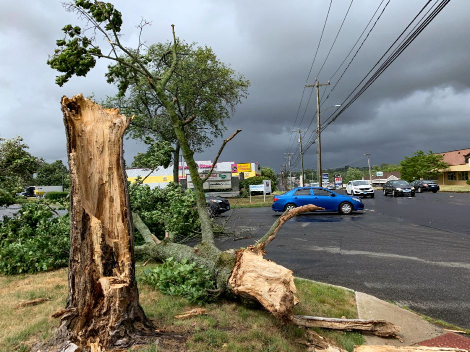 A tree lays across the driveway to 500 S. Broad St. in Meriden after being blown down in Tuesday