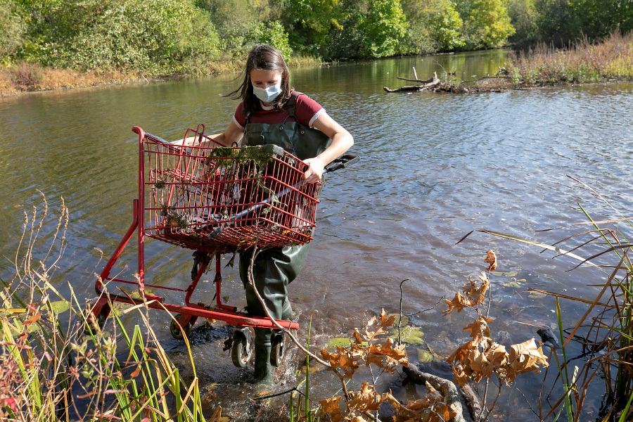 Platt High School student Mya Flis, 16, removes a carriage from Meriden's Hanover Pond as part of a community service project Thursday. Dave Zajac, Record-Journal