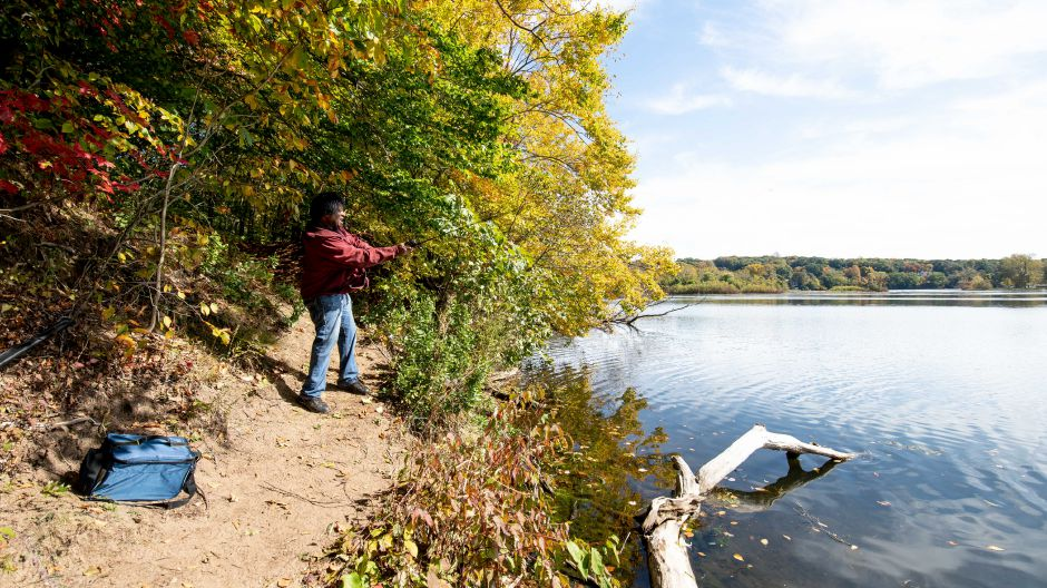 A fisherman practices fly fishing on Hanover Pond in Meriden on Oct. 13, 2019. | Devin Leith-Yessian/Record-Journal