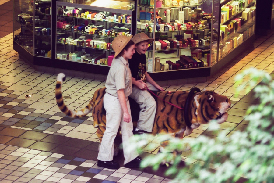 Jason LaPresle, 12, rides a machanical tiger in the Westfield Shopping Town with safari guide Krista Vazquez walking along side of him Feb. 4, 2000. The business is called Safari Rides and Photos. LaPresle is visiting family in the area. He lives in California. LaPresle said he has never seen one of these rides before.